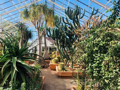 5 tips voor het maken van een tuinontwerp