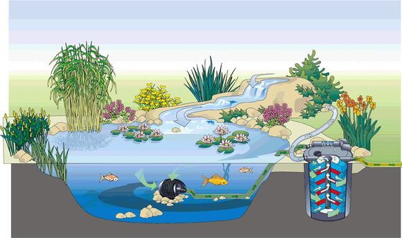 oase-filtoclear-6000-006.jpg