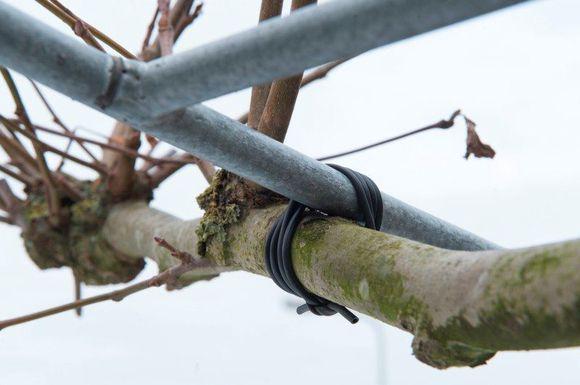 nature-binddraad-elastisch-zwart-50m