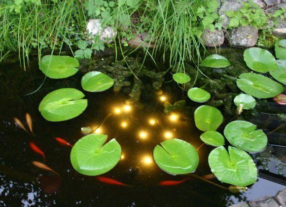 Velda Vijververlichting Welking Pond Light Dag