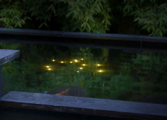 Velda Vijververlichting Welking Pond Light Nacht