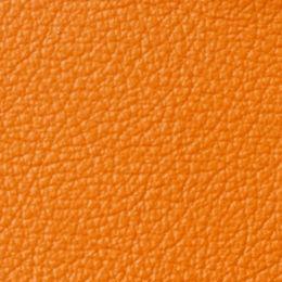 apollo bright orange