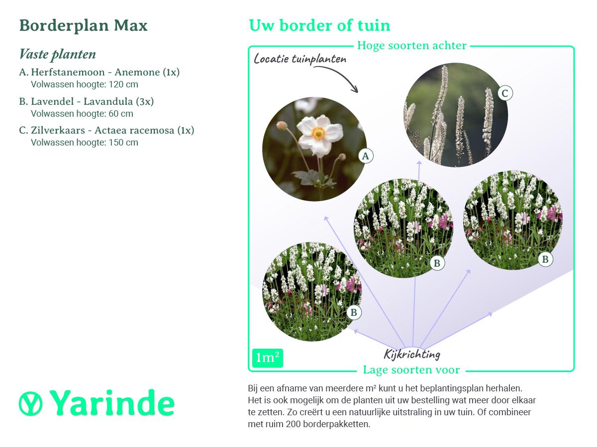 Beplantingsplan Max