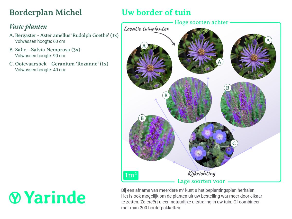 Beplantingsplan Michel