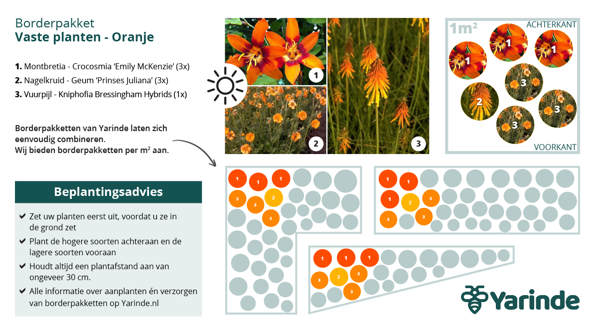 Beplantingsplan oranje zon