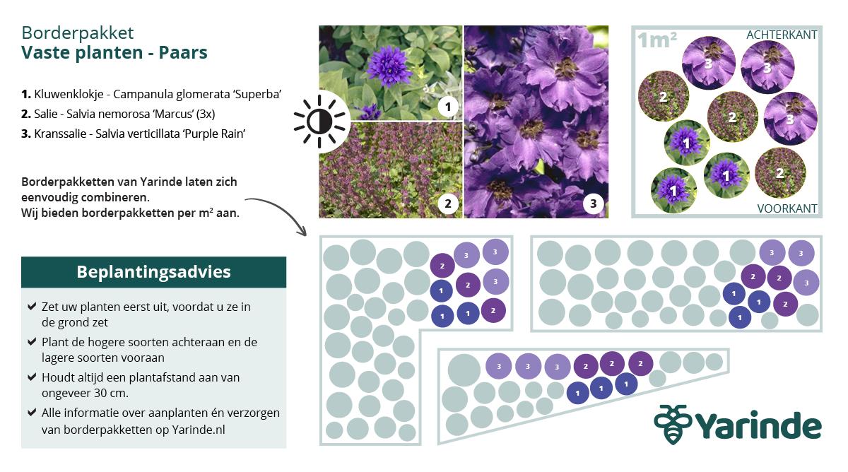 Beplantingsplan paars halfschaduw