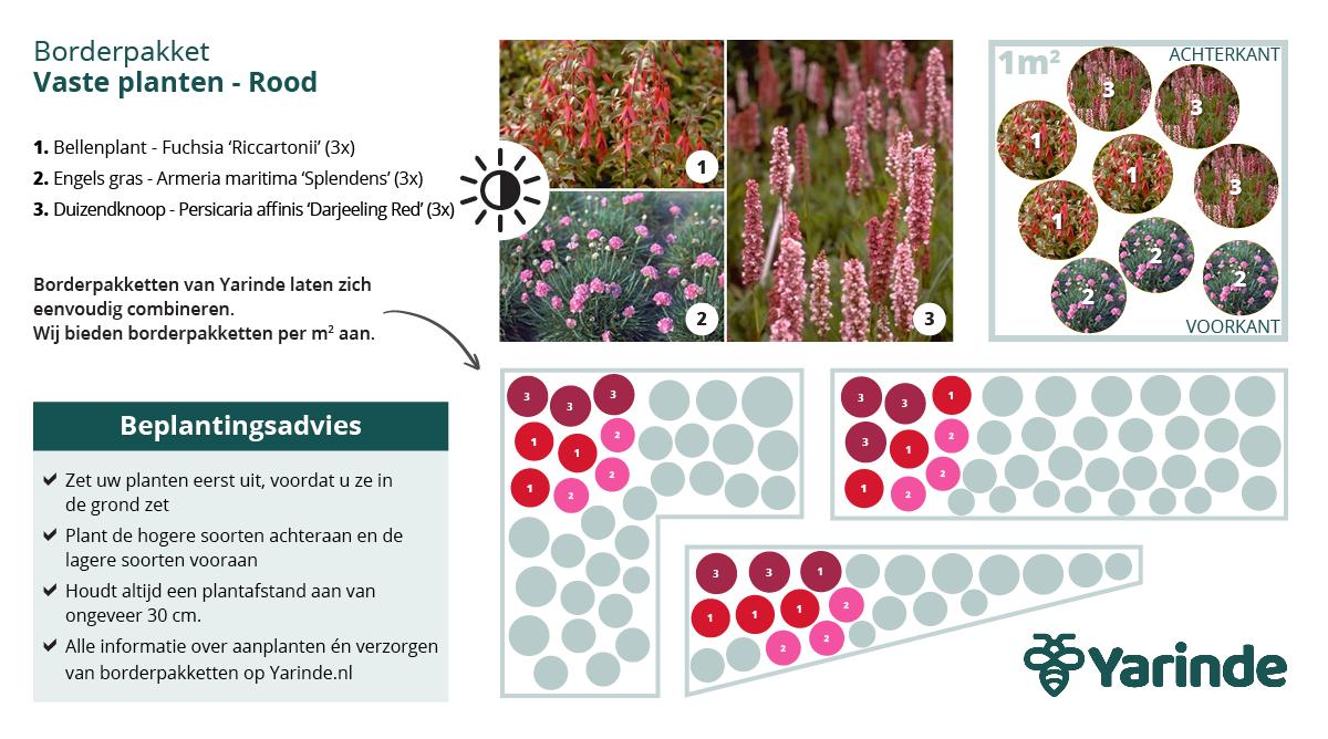Beplantingsplan rood halfschaduw