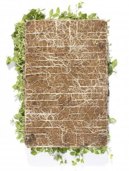 wortelgoed plantenmatten niet meer wachten kant en klaar