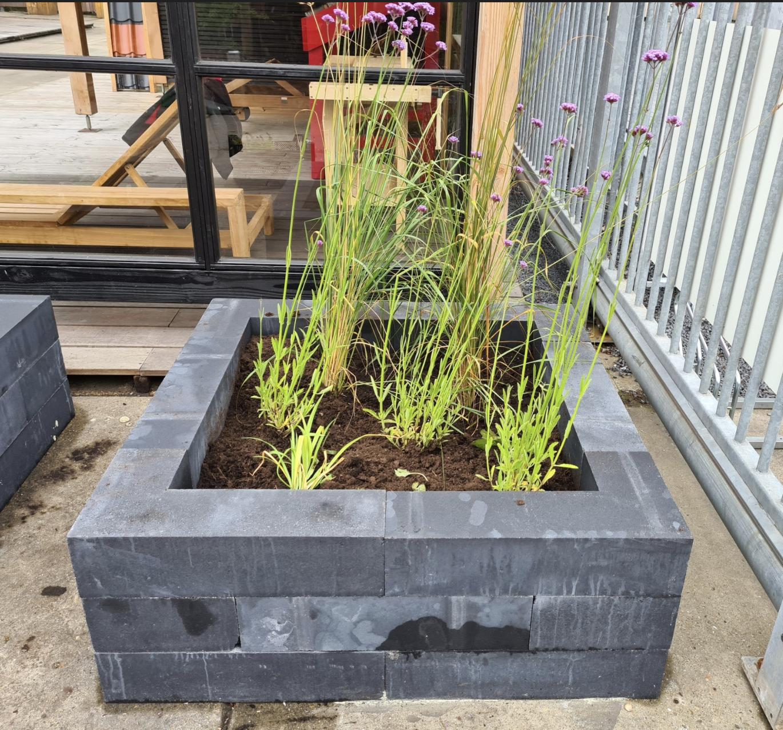 Tuinplanten borderpakket gadero breukelen
