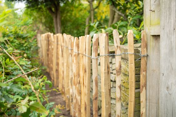 3 milieuvriendelijke alternatieven voor tropisch hardhout
