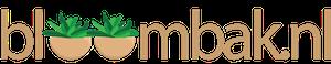 Bloombak