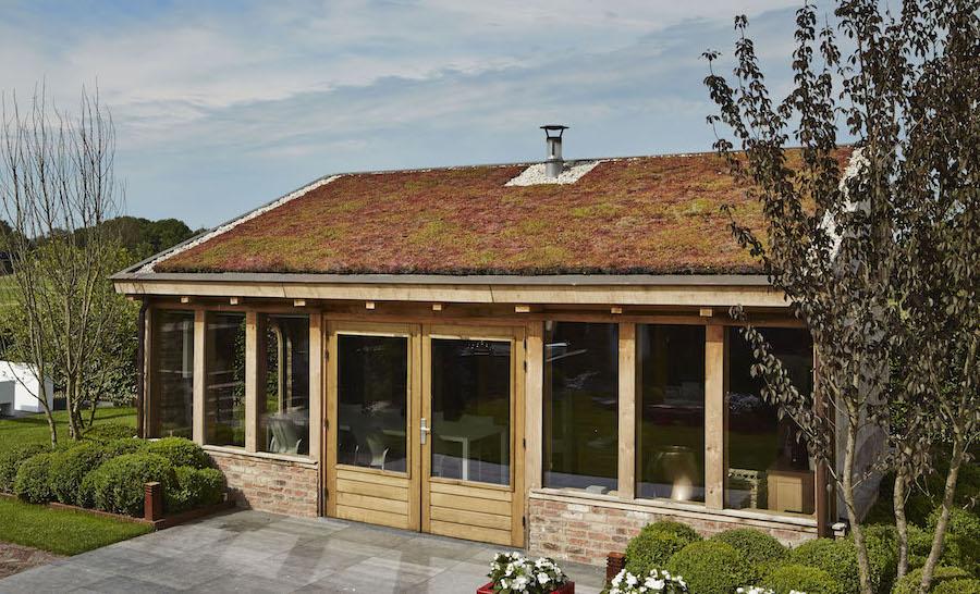 Groen dak tegen wateroverlast