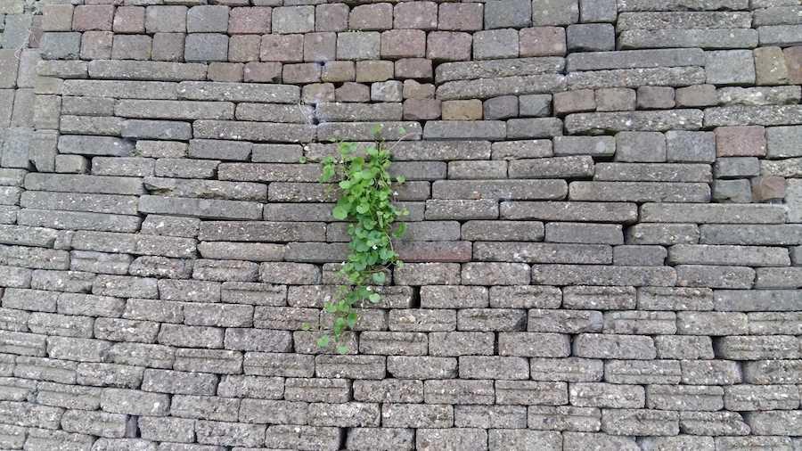 muur hergebruikte stenen