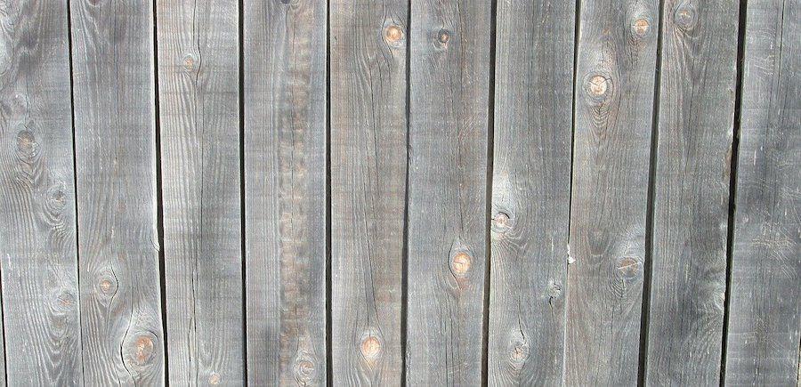 Vergrijst Red Cedar