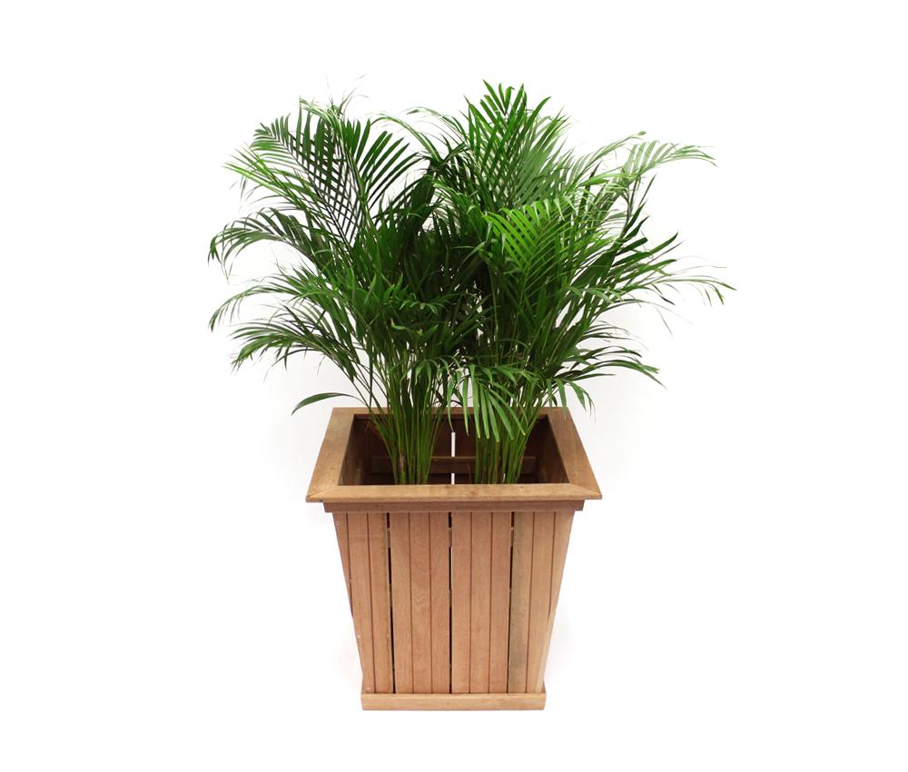 Hardhouten Plantenbak Taps 67 X 67 X 62 Cm