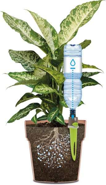 Aquaflora Druppelaar Holiday Basic Kopen? Haxo Aqualflora Dealer