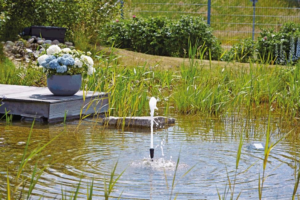 fontein-sproeikop-oase-schuimbron-22-5-k-voorbeeld-2.jpg