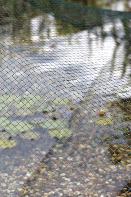 oase-aquanet-vijverafdeknet-1-002.jpg