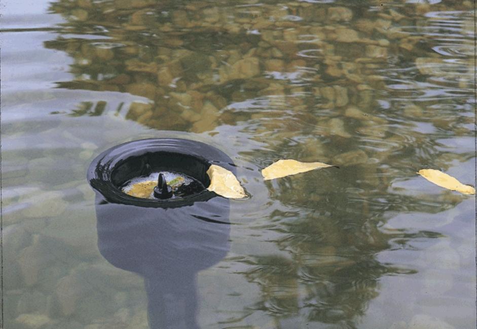 oase-aquaskim-40-04.jpg