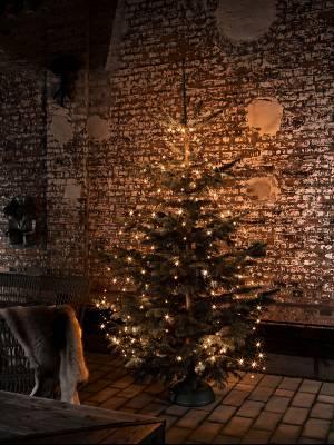 Doe inspiratie op met de kerstboomverlichting van Haxo.nl