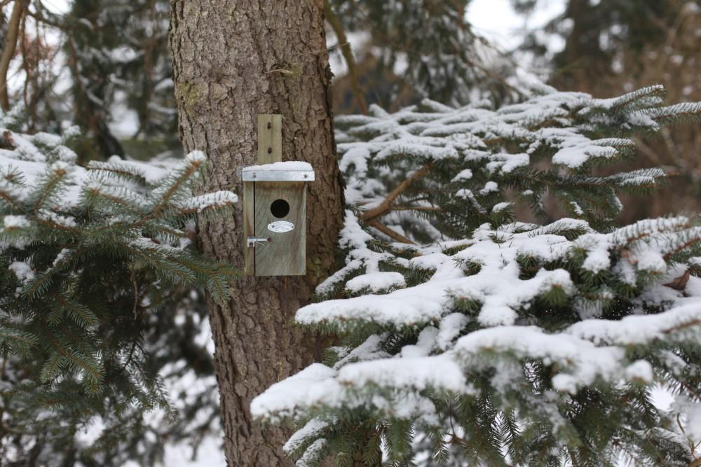Esschert Vogelhuis Winterkoning
