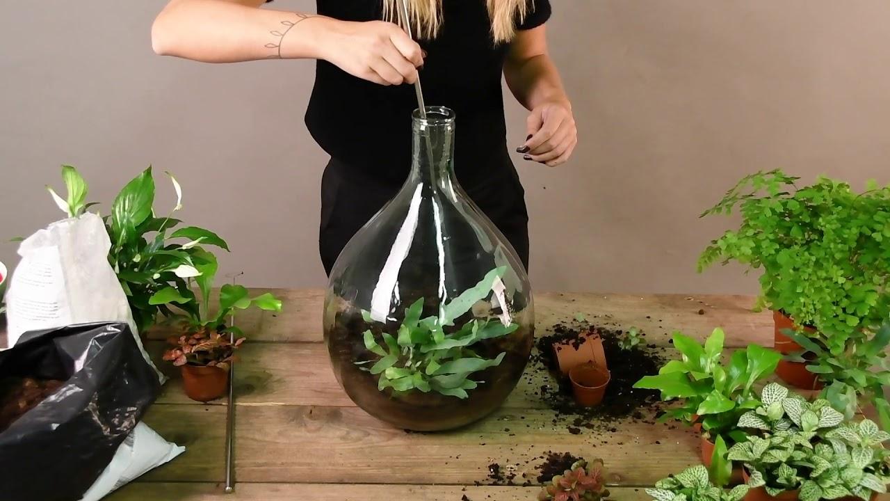 Esschert AGG62 | Planten Terrarium