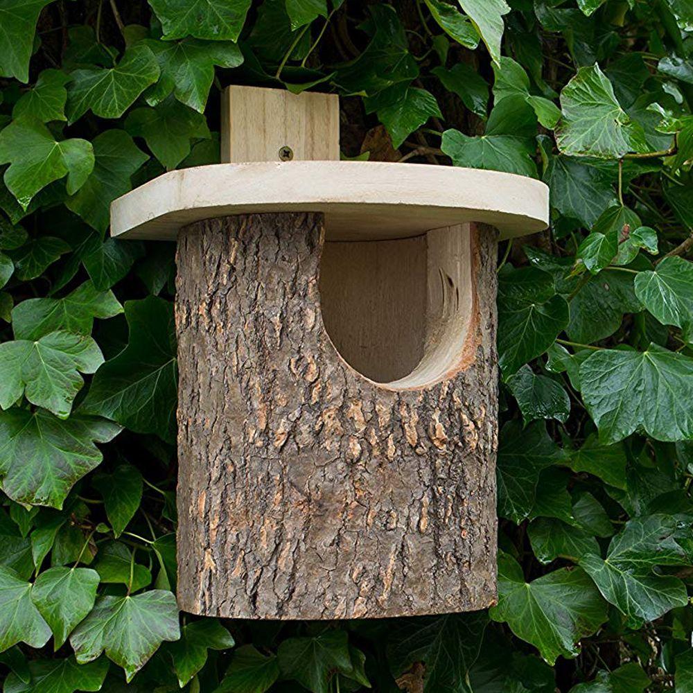 Vogelhuis Nestkast Voor Roodborstje Boomstam