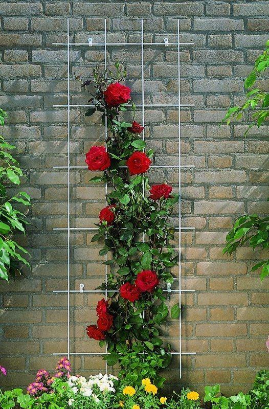 nature-klimplantrek-metaal-verzinkt-150x75cm