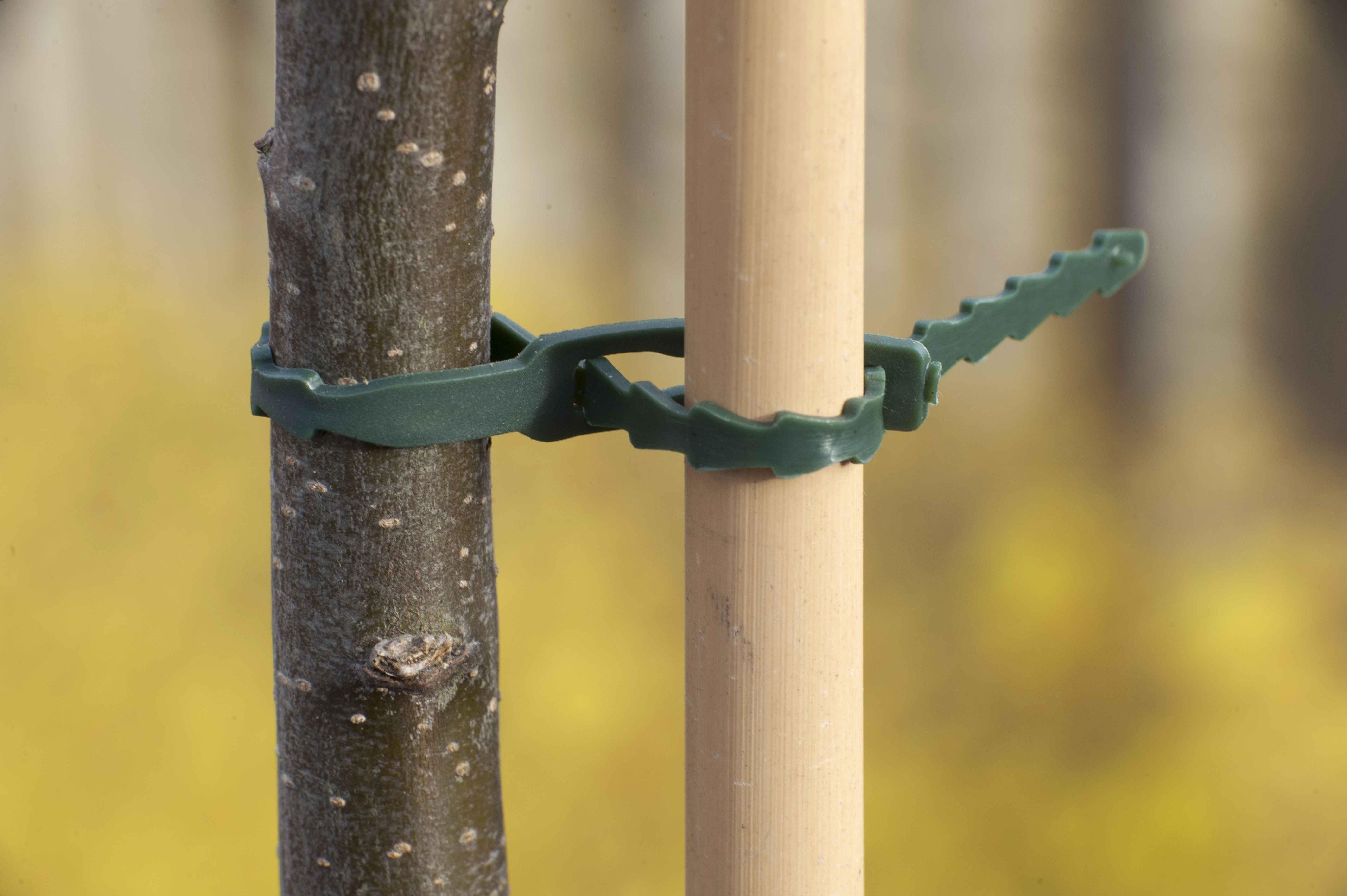 nature-bindband-23-cm