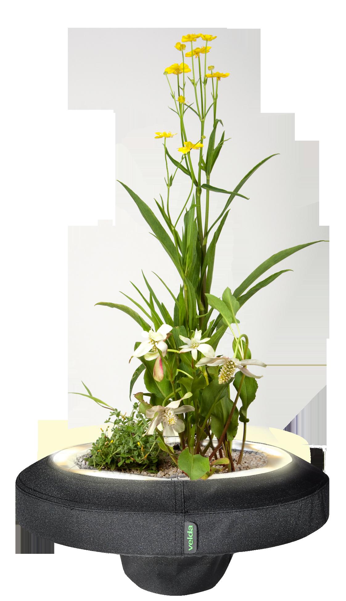 Velda Floating Plant Light