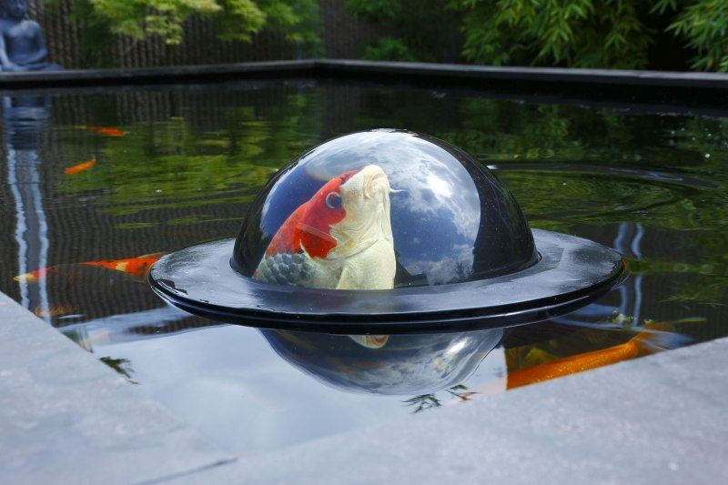 Velda Vijver Floating Fish Dome 2