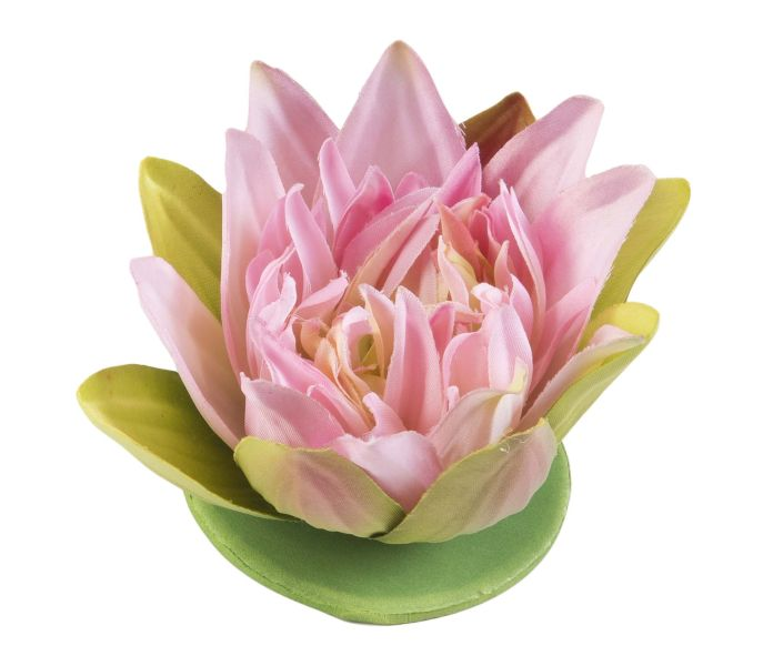 velda_drijvende_lotus_roze.jpg