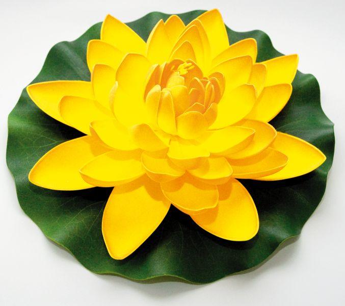 velda_lotus_geel_groot.jpg