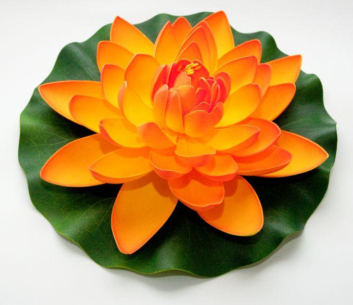 velda_lotus_oranje_groot.jpg