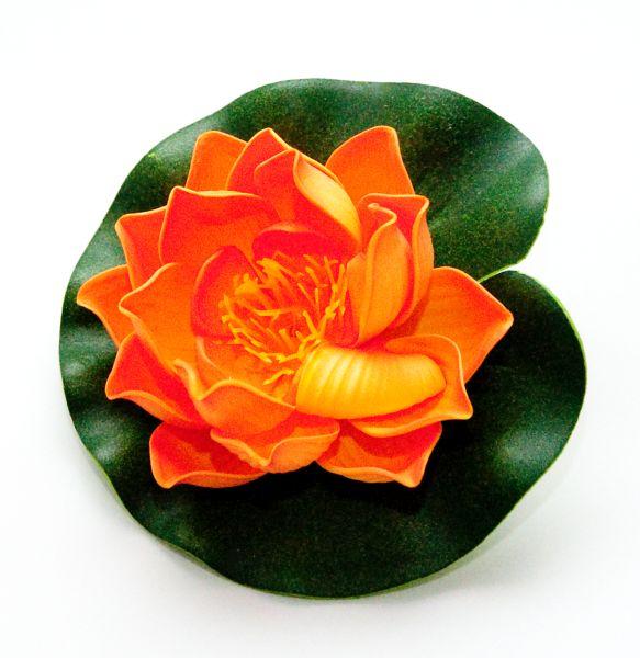 velda_lotus_oranje_klein.jpg
