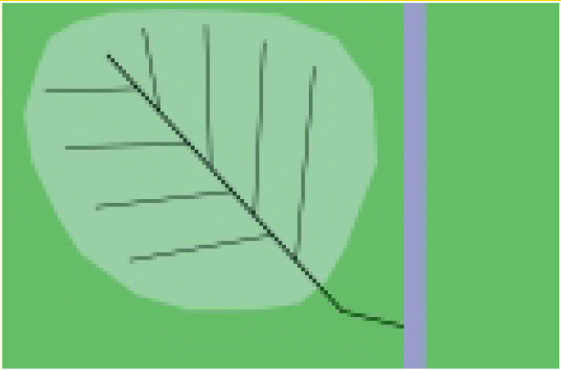 Drainagesysteem