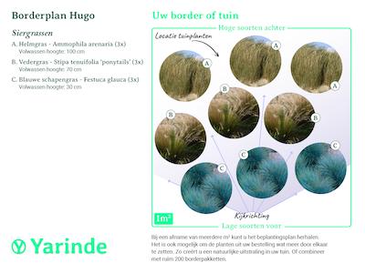 beplantingsplan borderpakket Hugo