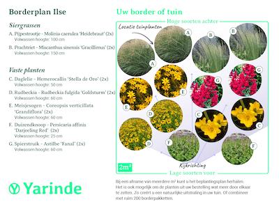 Beplantingsplan borderpakket Ilse