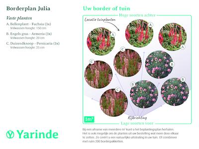 Beplantingsplan borderpakket Julia