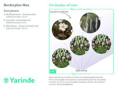 Beplantingsplan borderpakket Max