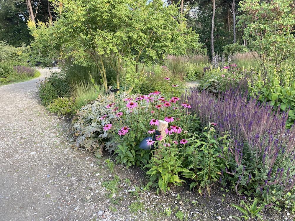beplantingsplan op maat - doordachte borders tuin