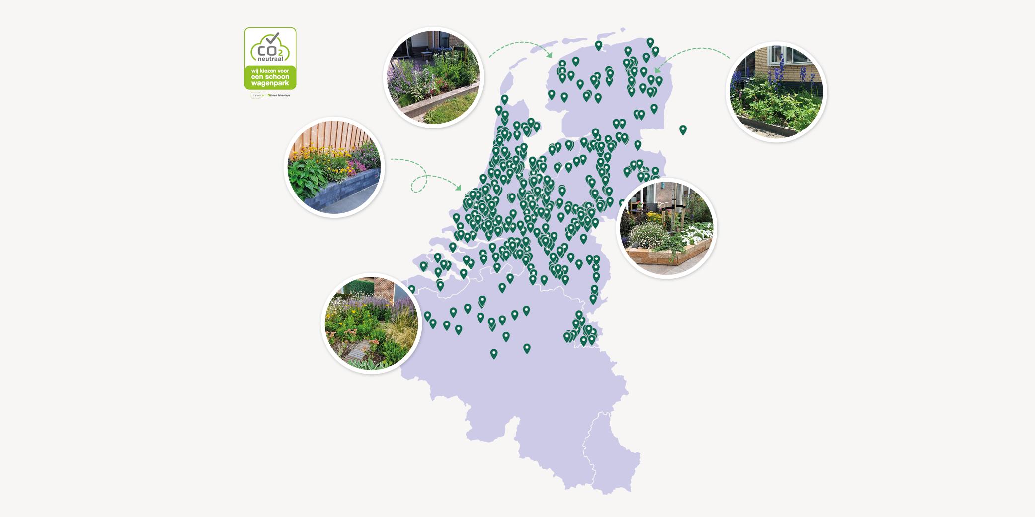 Help nederland groener maken met tuinplanten klimplanten borderpakket bomen
