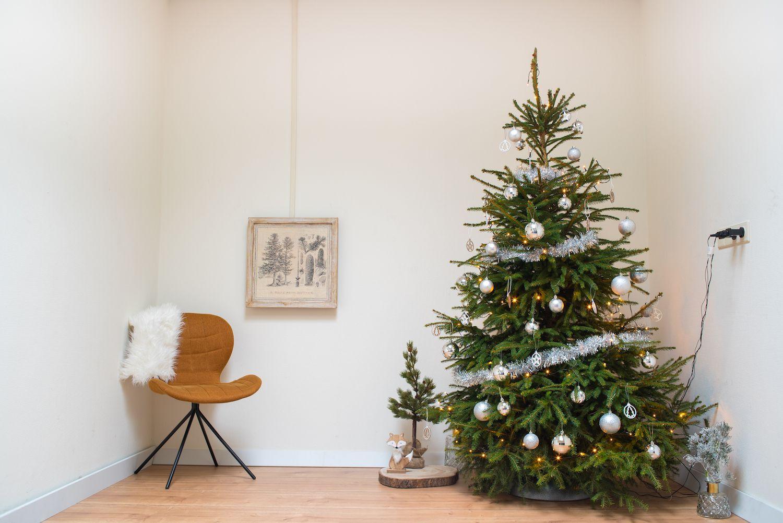 Kerstboom versiering zilver kerstballen slingers en decoratie for Decoratie zilver