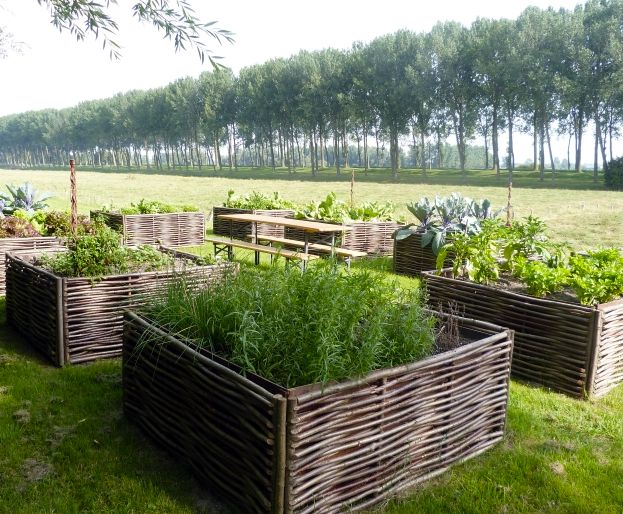 Moestuin Zelf Maken : Houten moestuinbak kruidentuin bak moestuin box hout hazelaar