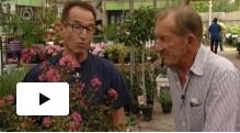 Rob verlinden grote tuinverbouwing aflevering 3 maarssen for Tuinprogramma op tv
