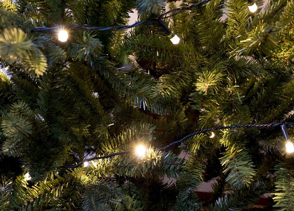 Party Verlichting Tuin : Led partyverlichting starterset groot buiten lampen