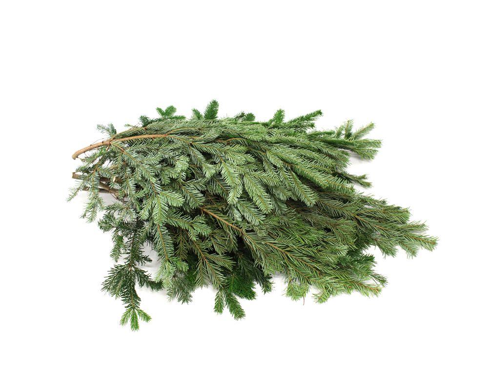 echte kerstboom kopen online nordmann bezorgen 175cm 2 meter