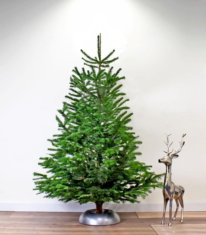 Kerstboom Standaard Easyfix Maxi Groen 52 Cm