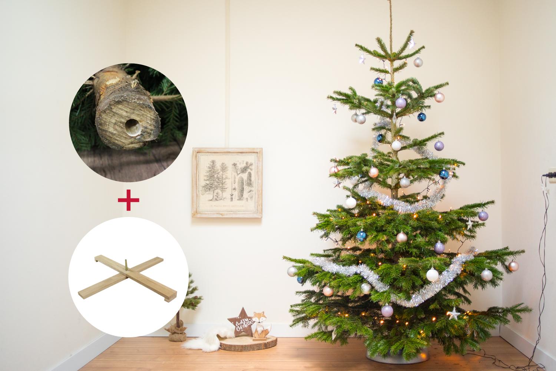 Echte Kerstboom Nordmann 200 225 Cm Complete Set Met Easyfix