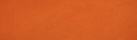 LIND DNA Onderzetter Leer Hippo Oranje Ø 10 cm